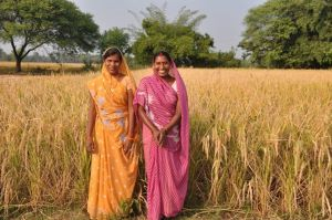 SRI farmers in India met during a visit by Dr. Erika Styger and Dr. Gaoussou Traoré.